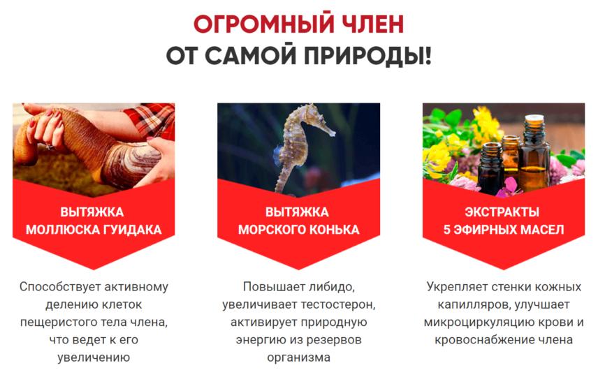 Состав Альфа Доминант