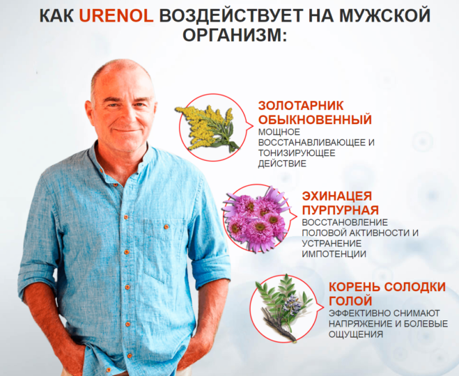 Основные компоненты лекарства Уренол