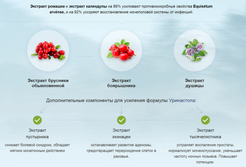 Состав Уринастопа